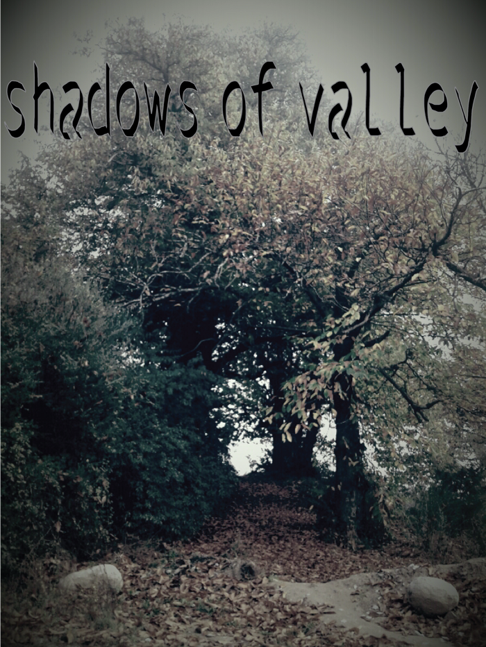 shadows of the valley Font poster