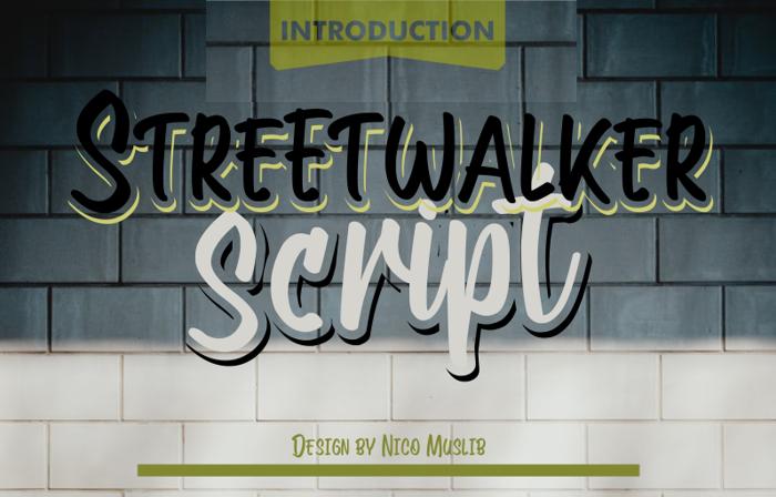 Streetwalker Script Font poster