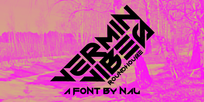 Vermin Vibes Roundhouse Font poster