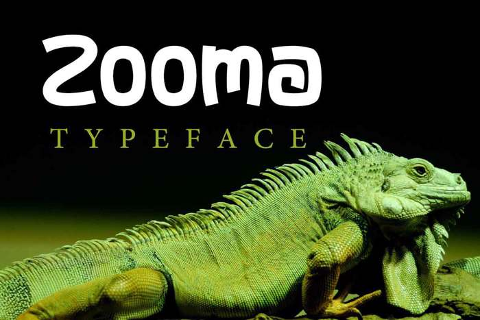 Zooma Font poster
