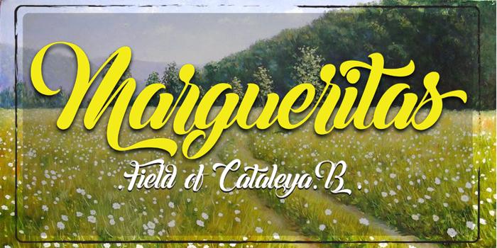 Margueritas Font poster