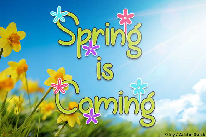 Spring is Coming Font poster