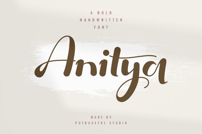 Anitya Font poster