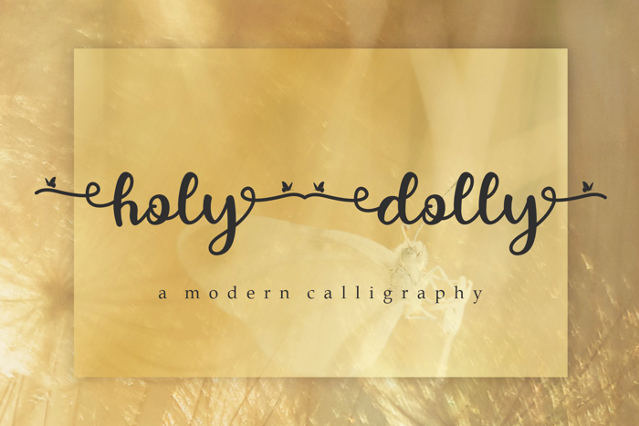 holy dolly Font poster