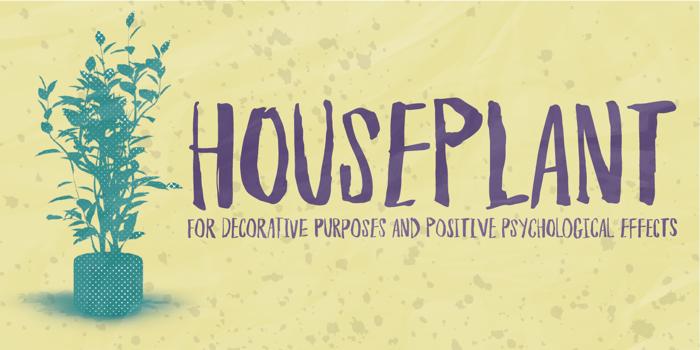 Houseplant DEMO Font poster