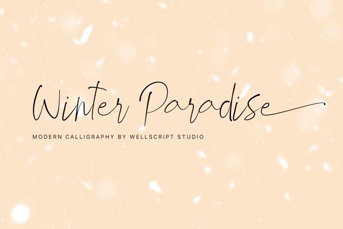 Winter Paradise Font poster