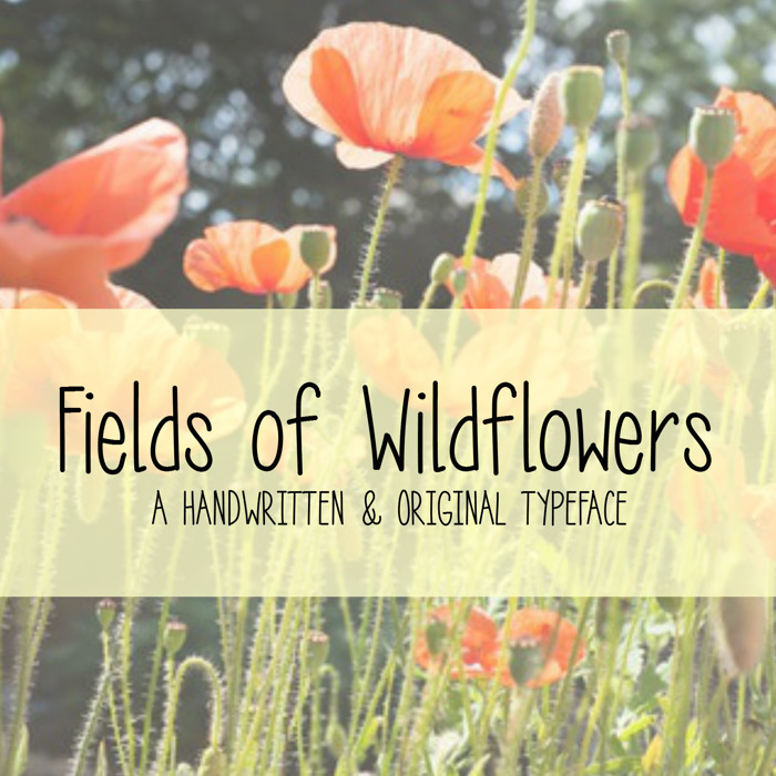 MRF Fields of Wildflowers Font poster