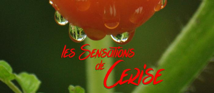 les Sensations de Cerise Font poster