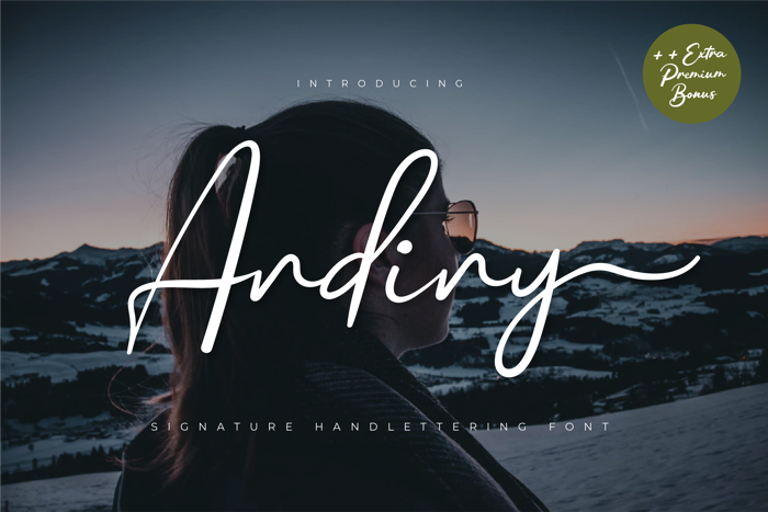 Andiny Font poster