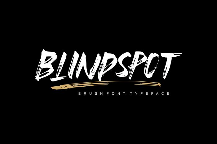 Blindspot Font poster