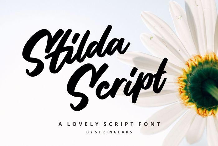 Stilda Script Font poster