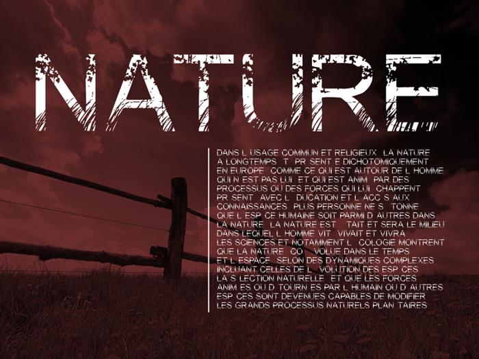 Nature Font poster
