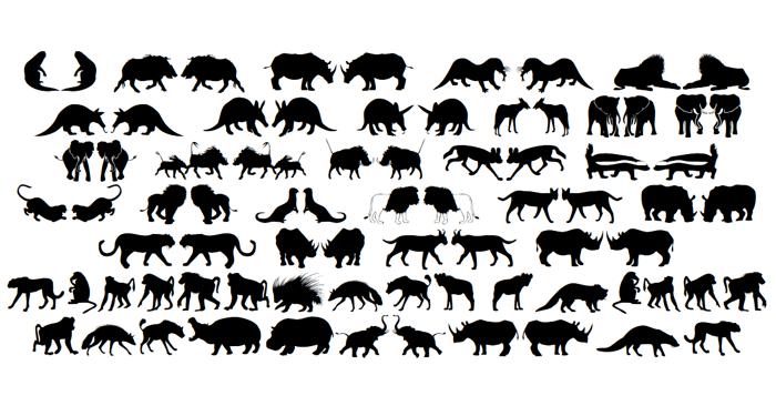 Afrika Wildlife B Mammals2 Font poster