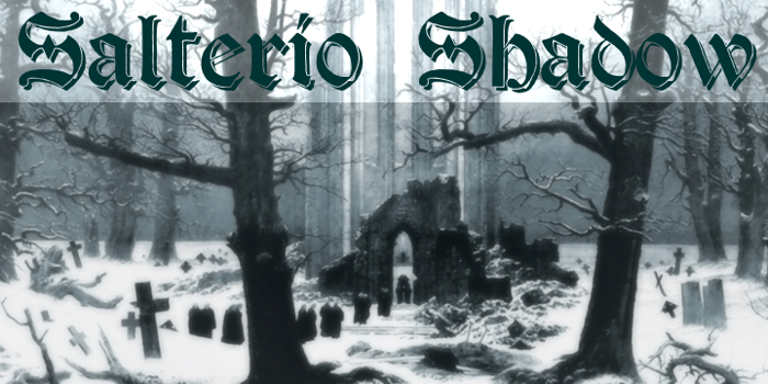 Salterio Shadow Font poster