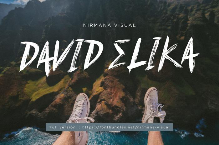 David Elika Font poster