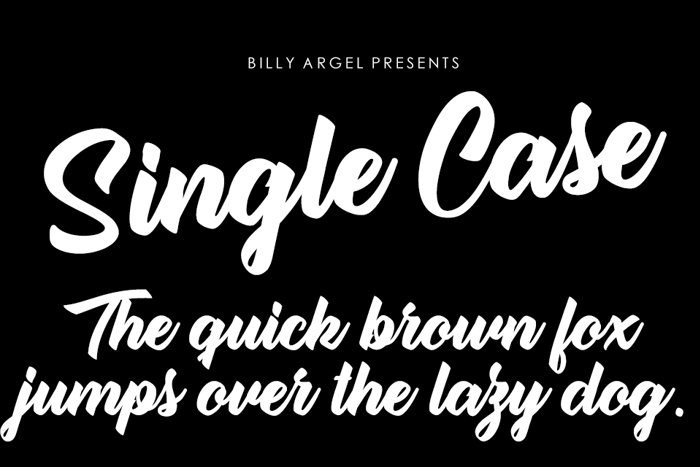 Single Case Font poster