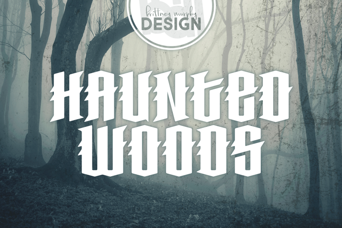 Haunted Woods Font poster