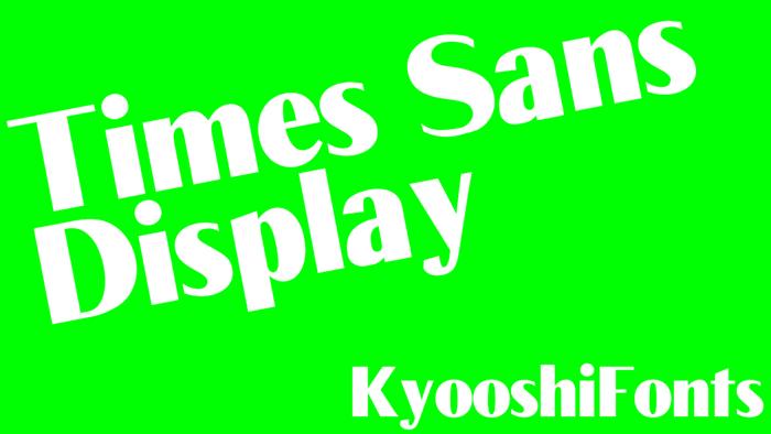 Times Sans Font poster