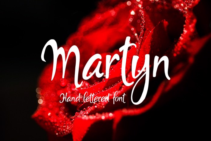 Martyn Font poster