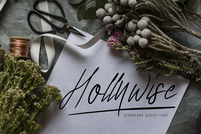 Hollywise Font poster