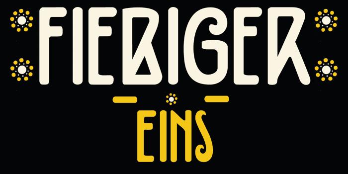 DK Fiebiger Eins Font poster