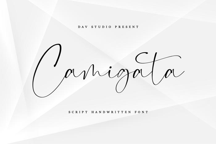 Camigata Font poster