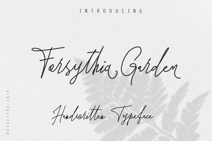 Forsythia Garden Font poster