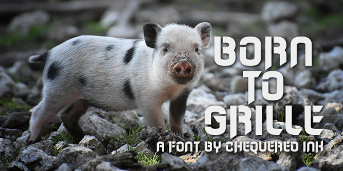 Born to Grille Font poster