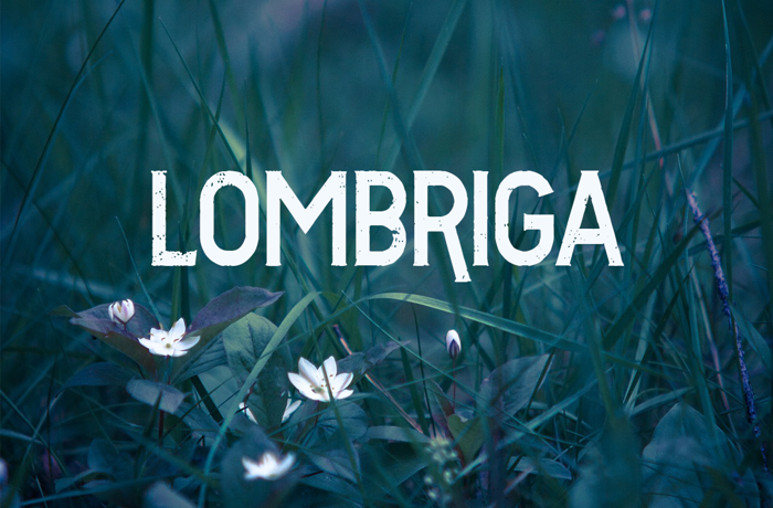 Vtks Lombriga Font poster