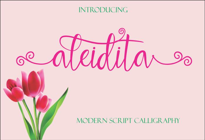 aleidita Font poster