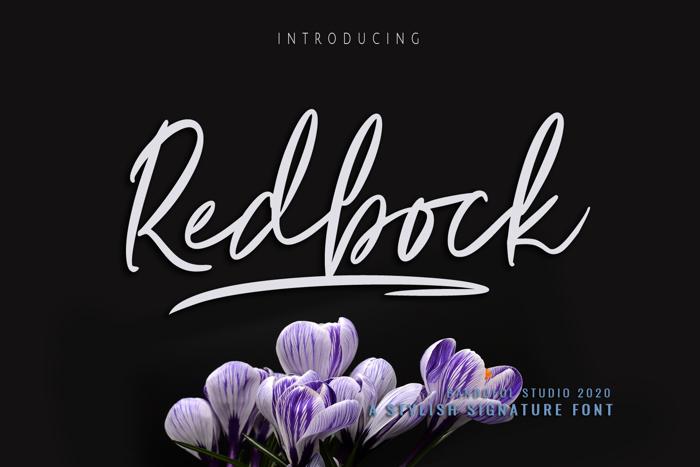 Redbock Font poster