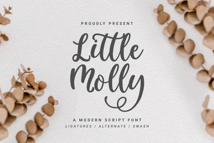 Little Molly Font poster
