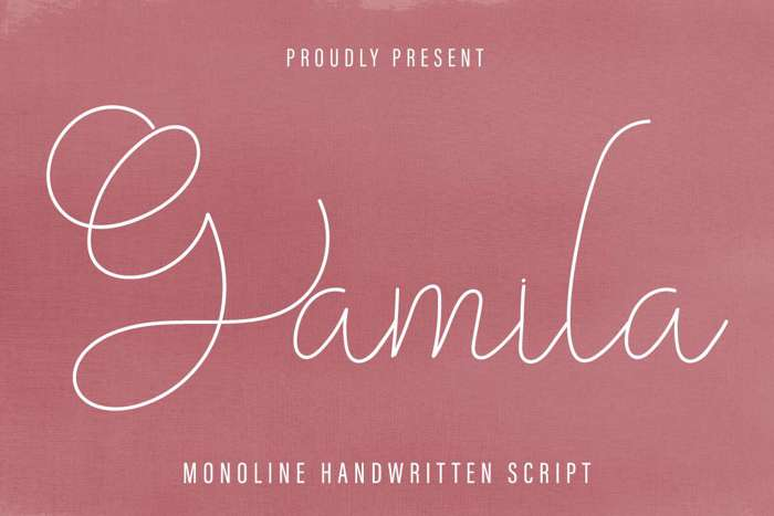 Gamila Font poster