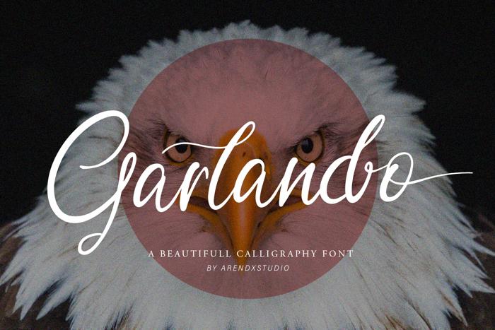 Garlando Font poster