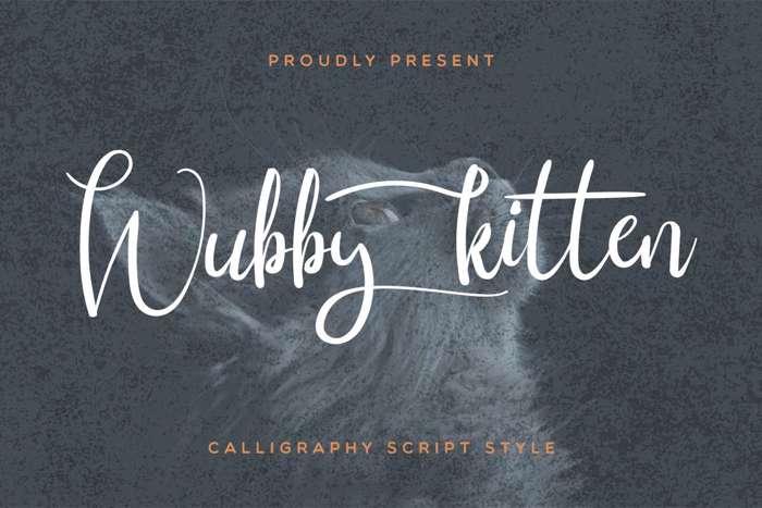 Wubby Kitten Font poster