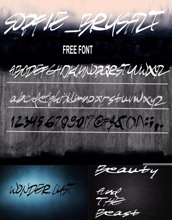SOFIEbrushZT Font poster