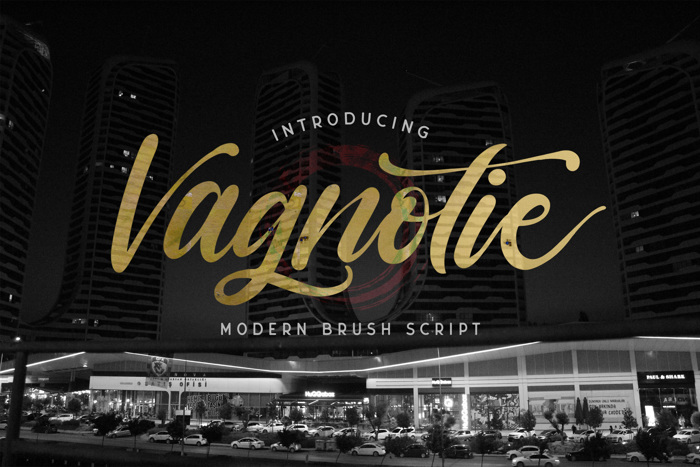vagnotie Font poster