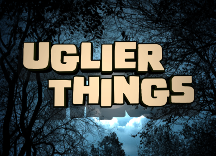 Uglier Things poster