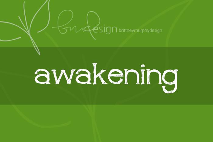 awakening Font poster