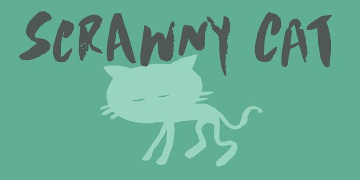 DK Scrawny Cat Font poster