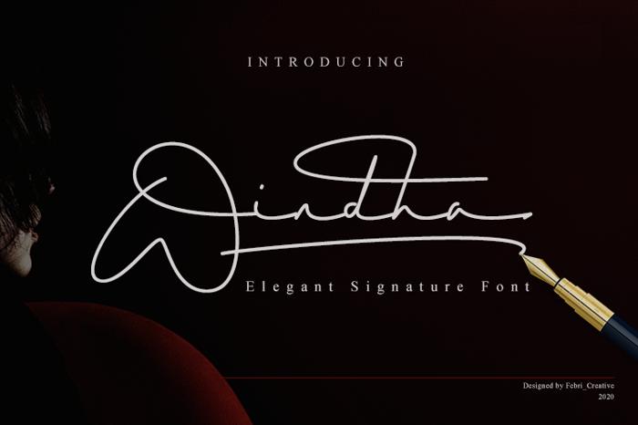 Windha Font poster