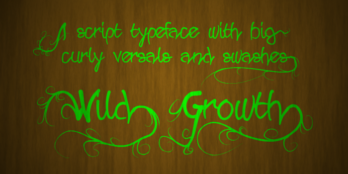 Wild Growth Font poster