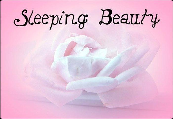 Sleeping Beauty Font poster