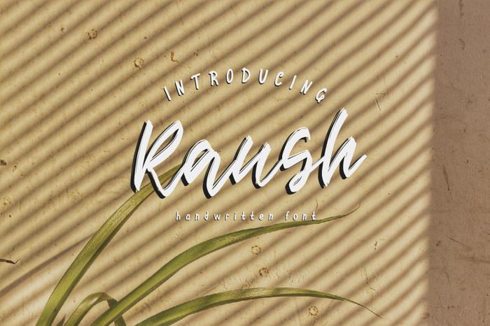 Raush Font poster