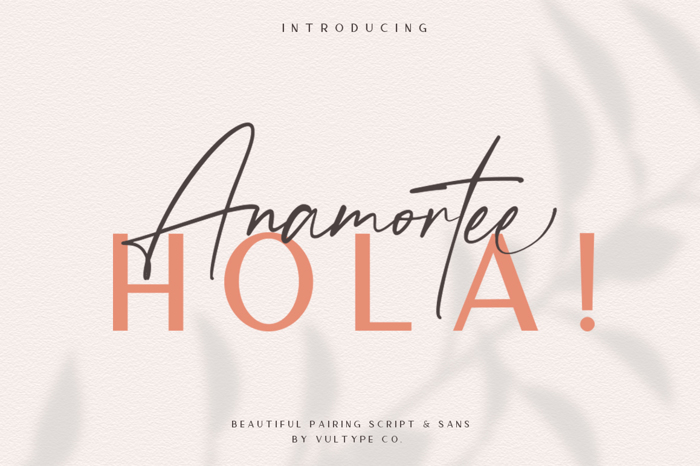 Anamortee Font poster