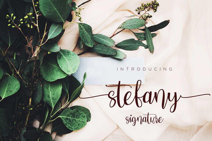 Stefany Signature Font poster