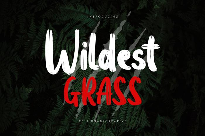 Wildest Grass Font poster