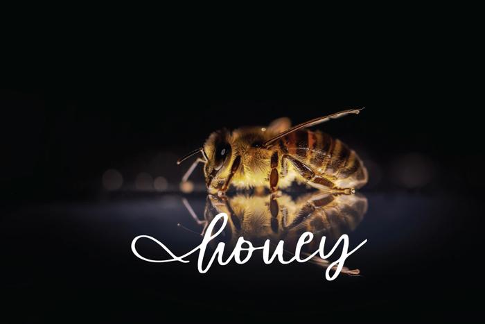 honey Font poster