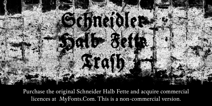 Schneidler Halb Fette Trash Font