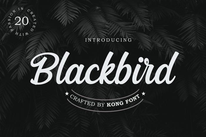 Blackbird Font poster
